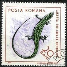 Sellos: RUMANIA 1964 SCOTT 1721 SELLO º FAUNE REPTILES LAGARTO LACERTA TRIILINEATA DOBROGISA 20BANI ROUMANIE. Lote 31280992