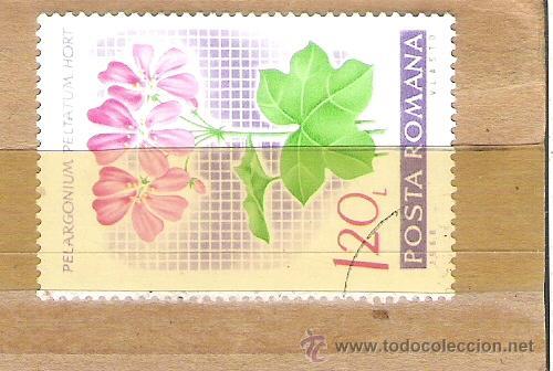 SELLOS - LOTE 1 SELLO USADO - RUMANIA ( FLORA - PLANTAS ) (Sellos - Extranjero - Europa - Rumanía)
