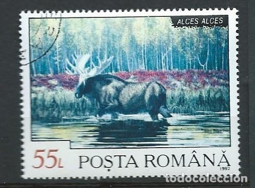 RUMANÍA,1992,FAUNA RUMANA,ALCE,USADO (Sellos - Extranjero - Europa - Rumanía)