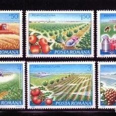 Timbres: ++ RUMANIA / ROMANIA / ROEMENIE AÑO 1982.YVERT NR. 3388/92 NUEVA AGRICULTURA. Lote 161544085
