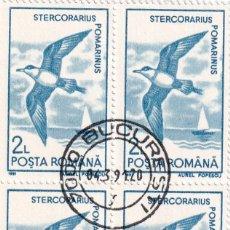 Sellos: 5 BLOQUES DE 4 DIFERENTES - TEMA: AVES, PÁJAROS / RUMANÍA 3.4.1991 - STERCORARIUS, RECURVIROSTRA,.... Lote 201284740
