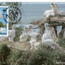 Sellos: RUMANIA TARJETA MAXIMA 1984 MCHEL ,4104. Lote 220443415
