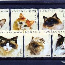 Timbres: @ RUMANIA / ROMANIA / ROUMANIE AÑO 2006 YVERT NR. 5055/60 NUEVA GATOS. Lote 251426950