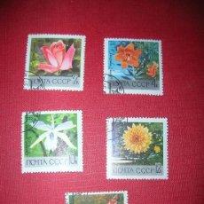 Sellos: 5 SELLOS RUSIA - AÑO 1969 -FLORES (·). Lote 34378456