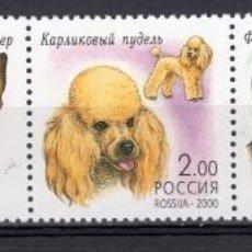 Sellos: SERIE COMPLETA DE RUSIA DEL AÑO 2000. Lote 39795374
