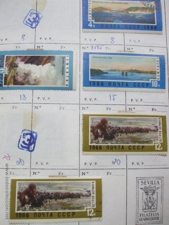 Sellos: .rusia 8 libretas aproximadamente 812 sellos clasificados, diversas calidades + fotos - Foto 15 - 50663116