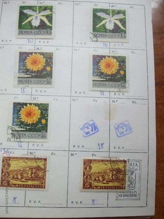 Sellos: .rusia 8 libretas aproximadamente 812 sellos clasificados, diversas calidades + fotos - Foto 46 - 50663116