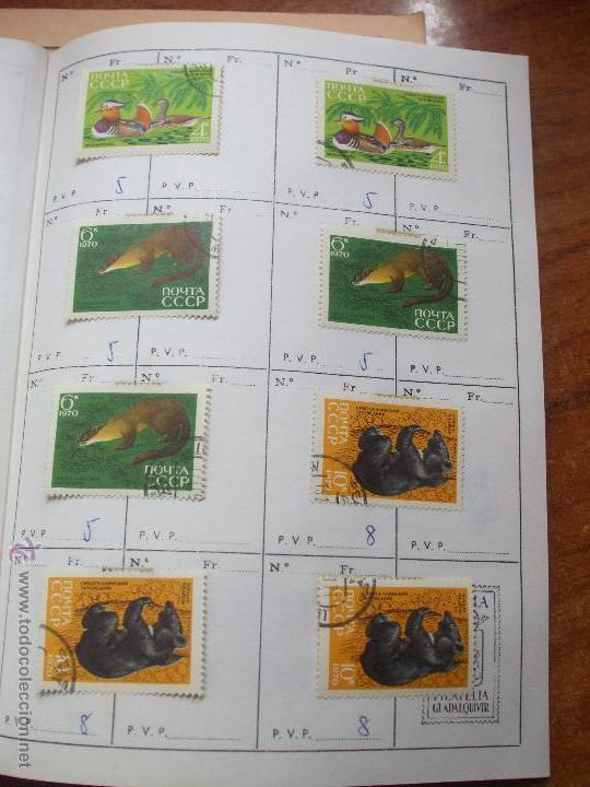 Sellos: .rusia 8 libretas aproximadamente 812 sellos clasificados, diversas calidades + fotos - Foto 68 - 50663116