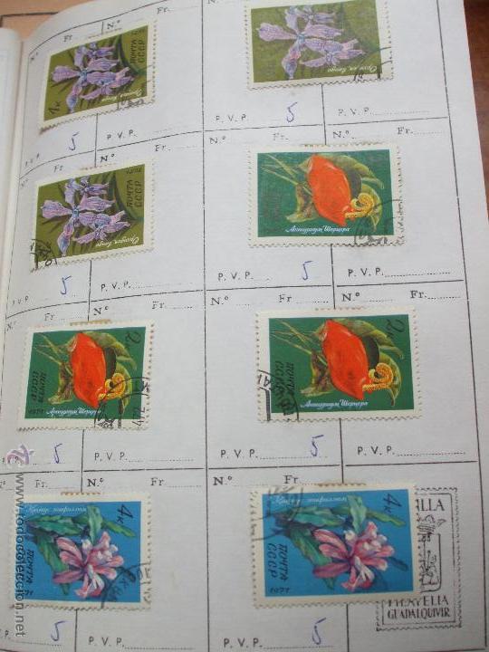 Sellos: .rusia 8 libretas aproximadamente 812 sellos clasificados, diversas calidades + fotos - Foto 84 - 50663116