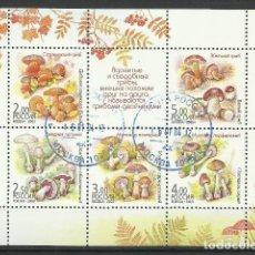 Francobolli: RUSIA 2003-HOJITA USADOS. Lote 125146919