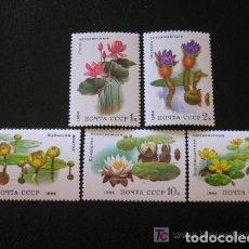 Sellos: RUSIA 1984 IVERT 5095/9 *** PLANTAS ACUATICAS - FLORA. Lote 166995708