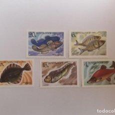 Selos: AÑO 1983 Nº 5017/21 RUSIA SERIE NUEVA. Lote 247482295