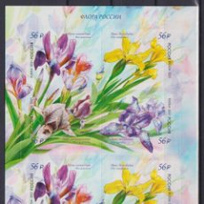 Sellos: ⚡ DISCOUNT RUSSIA 2021 IRISES LISTED IN THE RED BOOK MNH - FLOWERS. Lote 257578085
