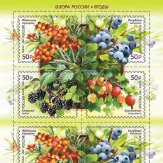 Sellos: ⚡ DISCOUNT RUSSIA 2021 FLORA OF RUSSIA - BERRIES MNH - FLORA, BERRIES. Lote 257578125