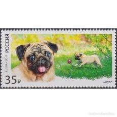 Sellos: RU2450 RUSSIA 2019 MNH DECORATIVE DOG BREEDS - PUG. Lote 293413443