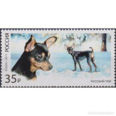Sellos: RU2451 RUSSIA 2019 MNH DECORATIVE DOG BREEDS - RUSSKIY TOY. Lote 293413463