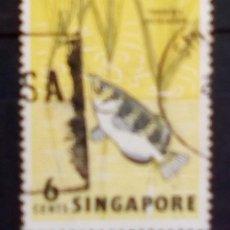 Sellos: SINGAPUR PECES SELLO USADO. Lote 181716022