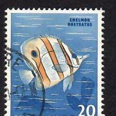 Sellos: SINGAPUR (1962). FAUNA Y FLORA: PEZ MARIPOSA. YVERT Nº 58. USADO.. Lote 285486728