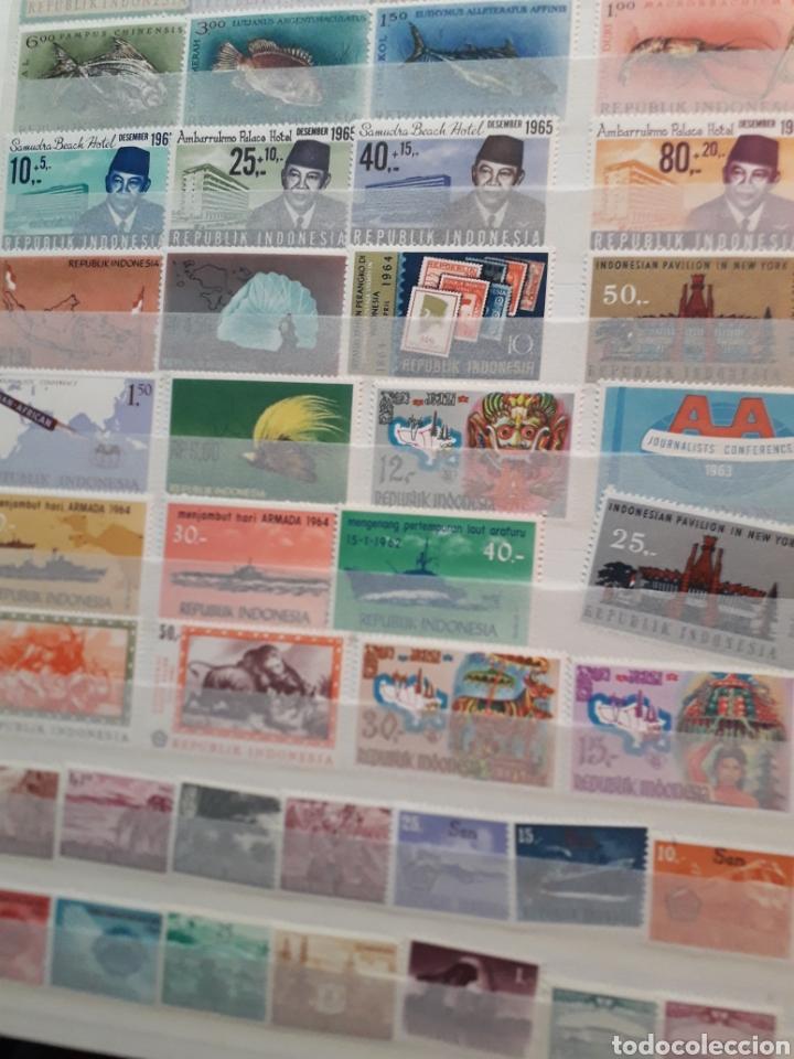 Sellos: ALBUM SELLOS.AUSTRIA.OSTERREICH.RWANDAISE.INDONESIA.TOGO.MANAMA.MONGOLIA.BRASIL - Foto 31 - 225409105
