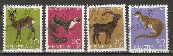 SUIZA.1967. YT 799/802. FAUNA (Sellos - Extranjero - Europa - Suiza)