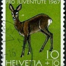 Sellos: SUIZA TASAS PROJUVENTUD 1967 FAUNA CORZO SELLO USADO. Lote 262867940