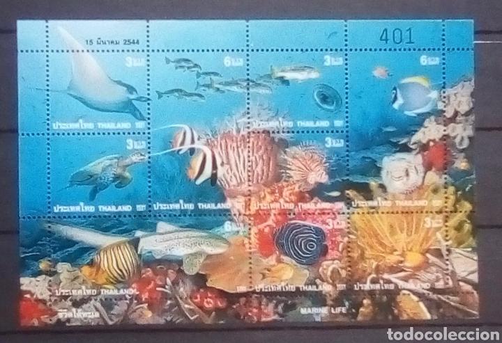 TAILANDIA FAUNA MARINA HOJA BLOQUE DE SELLOS NUEVOS (Sellos - Extranjero - Asia - Tailandia)