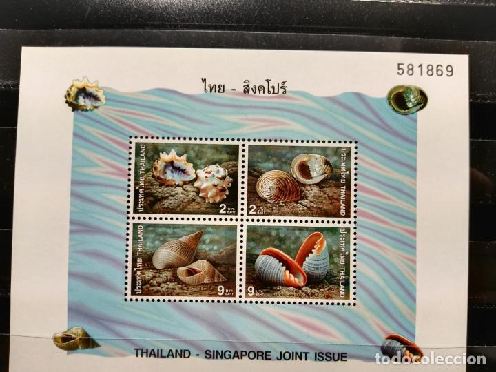 TAILANDIA. HB. 102. FAUNA MARINA. CARACOLES MARINOS. NUEVA. (Sellos - Extranjero - Asia - Tailandia)