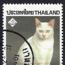 """Sellos: TAILANDIA 1995 - EXPO. NACIONAL DE SELLOS """"THAIPEX"""" - GATOS - USADO. Lote 222799877"""