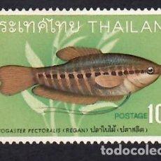 Francobolli: TAILANDIA (1968). PECES: TRICHOGASTER PECTORALIS. YVERT Nº 490. NUEVO*** SIN FIJASELLOS.. Lote 289625718