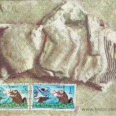 Sellos: EUROPA - CEPT TARJETA MAXIMA 26 SEP 1966. Lote 205136230
