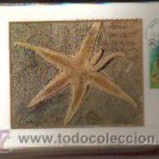 Sellos: TARJETAS FAUNA --INVERTEBRADOS COMPLETA 5 VALORES AÑO 1979 PRIMER DIA MADRID VER FOTOS . Lote 50437727