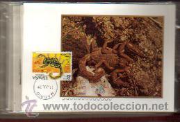 Sellos: TARJETAS FAUNA --INVERTEBRADOS COMPLETA 5 VALORES AÑO 1979 PRIMER DIA MADRID VER FOTOS - Foto 3 - 50437727