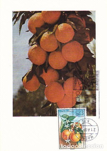 EDIFIL 2256, NARANJO, TARJETA MAXIMA DE PRIMER DIA 21-4-1975 (Sellos - España - Otros - Tarjetas Máximas )