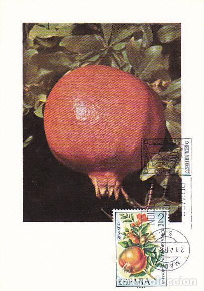 EDIFIL 2255, GRANADO, TARJETA MAXIMA DE PRIMER DIA DE 21-4-1975 (Sellos - España - Tarjetas Máximas )