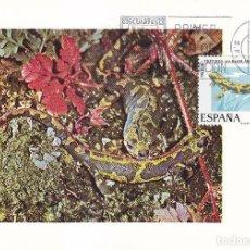 Sellos: TRITON FAUNA HISPANICA 1975 (EDIFIL 2273) EN TARJETA MAXIMA PRIMER DIA.. Lote 113148995