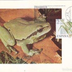 Sellos: RANITA DE SAN ANTONIO FAUNA HISPANICA 1975 (EDIFIL 2274) EN TARJETA MAXIMA PRIMER DIA.. Lote 113149063