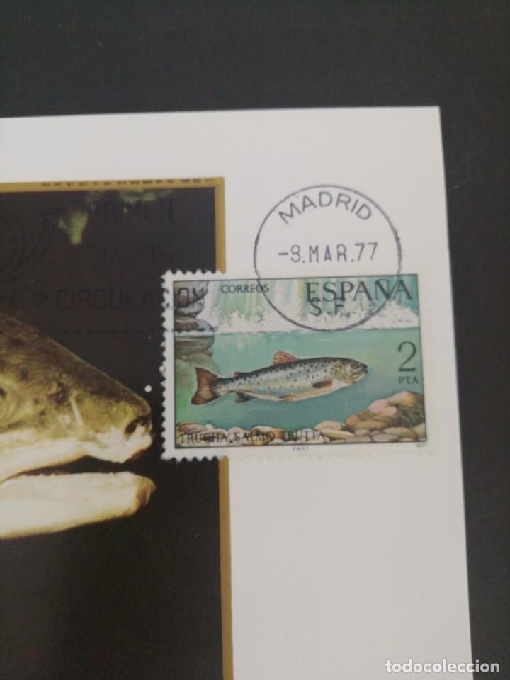 Sellos: Tarjeta con sello, Trucha. Primer día de circulación. Año 1977. - Foto 2 - 166631878