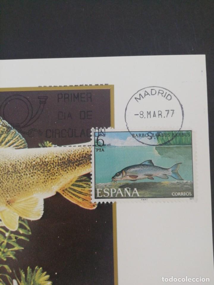 Sellos: Tarjeta con sello, Barbo. Primer día de circulación. Año 1977. - Foto 2 - 166632026