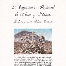 Sellos: 6ª EXPOSICION REGIONAL DE FLORES Y PLANTAS TENERIFE - CANARIAS 1981. Lote 269027474