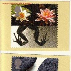 Sellos: GRAN BRETAÑA PHQ CARD 217 - AÑO 2000. Lote 1336832