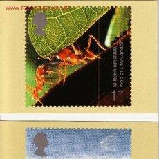 Sellos: GRAN BRETAÑA PHQ CARD 218 - AÑO 2000. Lote 1336853