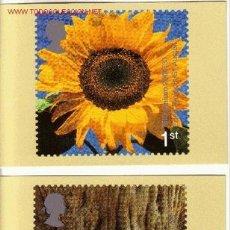 Sellos: GRAN BRETAÑA PHQ CARD 222 - AÑO 2000 - NUEVO MILENIO. Lote 3292910