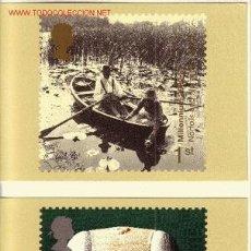 Sellos: GRAN BRETAÑA PHQ CARD 223 - AÑO 2000 - NUEVO MILENIO. Lote 3211412