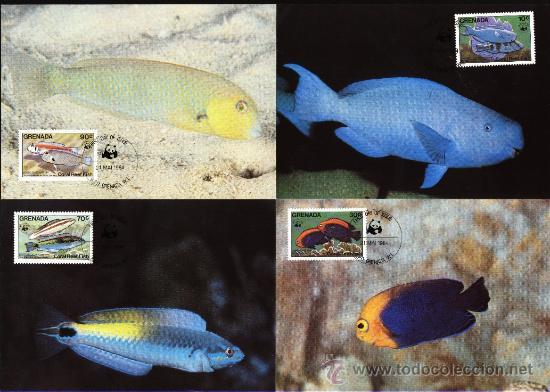 SERIE 4 TARJETAS MAXIMA WWF ( ADENA) PECES DE CORAL GRENADA - FAUNA - ANIMAL (Sellos - Extranjero - Tarjetas Máximas)