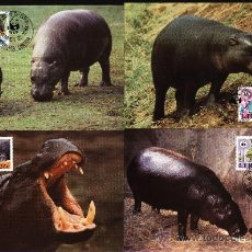 Sellos: SERIE 4 TARJETAS MAXIMA LIBERIA WWF ( ADENA) HIPOPOTAMO . FAUNA ANIMAL. Lote 26633372