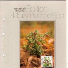 Sellos: DEUTSCHE MAXIMUMKARTEN NATUR UND UMWELTSCHUTZ PREISELBEERE MAXIMA ALEMANIA 1991. Lote 36386011