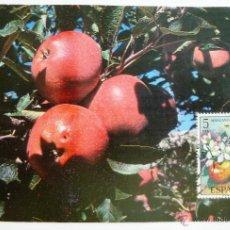 Sellos: TARJETA MANZANO. MATASELLOS MALAGA 1993. EN CARTULINA.. Lote 45282968