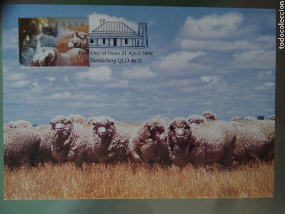 AUSTRALIA 1998 5 TARJETAS MÁXIMAS AGRICULTURA GANADERÍA (Sellos - Extranjero - Tarjetas Máximas)
