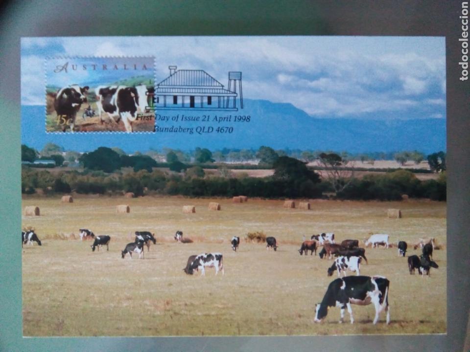 Sellos: Australia 1998 5 tarjetas máximas agricultura ganadería - Foto 3 - 73788422