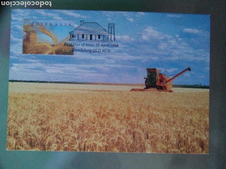 Sellos: Australia 1998 5 tarjetas máximas agricultura ganadería - Foto 4 - 73788422
